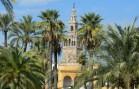 Giralda jardins Alcazar