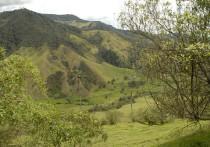Vers un nouvel eldorado : la Colombie