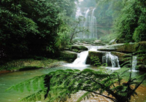 Paysages intérieurs, paysages extérieurs : la province du Guizhou